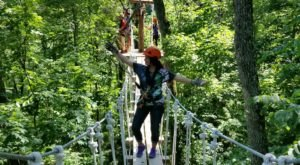 This Canopy Walk Near Cincinnati Will Make Your Stomach Drop
