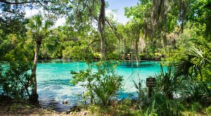 The Natural Swimming Hole In Florida That Will Take You Back To The Good Ole Days