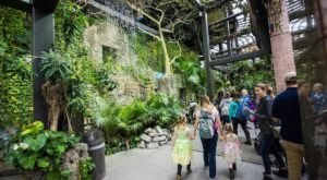 8 Tropical Places You Can Visit Without Ever Leaving Greater Cleveland