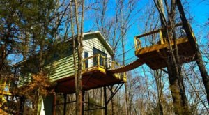 This Treehouse Resort In Missouri May Just Be Your New Favorite Destination