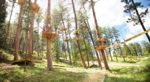 The Treetop Trail That Will Show You A Side Of South Dakota You've Never Seen Before
