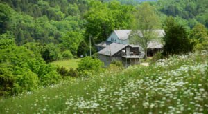 You Can Have A Picture Perfect Stay At The Most Beautiful Farm In Kentucky