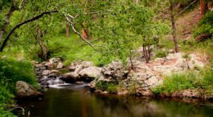 The Creekside Trail In South Dakota That's Absolutely Perfect For Summer