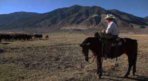 8 Undeniable Differences Between The Northern And Southern Parts Of Nevada