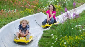 You Will Want To Begin Your Summer With A Ride Down This Epic Colorado Alpine Slide