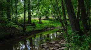 This Quaint Little Trail Is The Shortest And Sweetest Hike Near Nashville