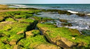 This Hidden Trail In North Carolina Leads You To A Geologic Beach Wonder