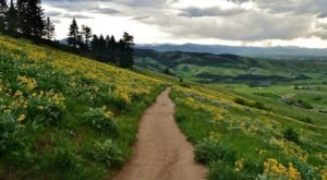 The Easy Trail In Montana That Will Take You To The Top Of The World