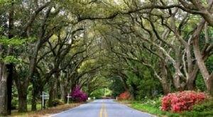 A Drive Through This Small Coastal Alabama Town Is A Dream Come True