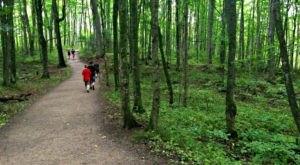 This Quaint Little Trail Is The Shortest And Sweetest Hike In Michigan