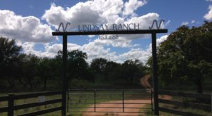 There's An Awesome Rock Ranch Hiding In Texas And You'll Want To Visit