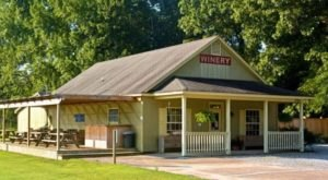 10 Small-Town Wineries In Tennessee You'll Want To Explore