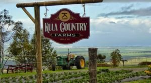 The Rural Farm In Hawaii That Is What Dreams Are Made Of