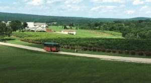 3 Trolley Tours Through Missouri's Most Popular Wine Destinations You'll Want To Take