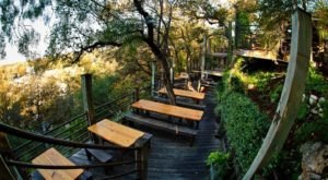 Dine Among The Trees At This Magical Restaurant Near Austin