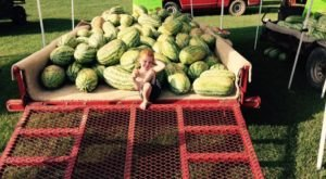 This Small Town In Arkansas Is Famous For Their World Record Watermelons