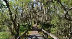 7 Easy Hikes Around New Orleans You'll Want To Knock Of Your Summer Bucket List