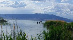 The Utah Lake That You Should Avoid At All Costs This Summer