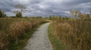 There's A Hike In Rhode Island That Leads You Straight To An Abandoned WWII Airfield