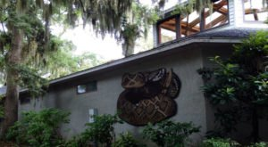 Most People Don't Know About This Underrated Zoo Hiding In South Carolina