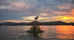 A Trip To This Floating Tiki Bar In New York Is The Ultimate Way To Spend A Summer Day
