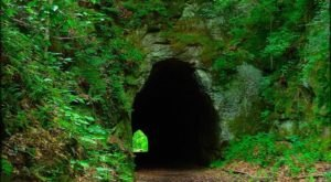 The Tunnel Trail In Ohio That Will Take You On An Unforgettable Adventure