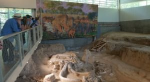 Take A Day Trip To This Fascinating Ice Age Fossil Park Near Austin