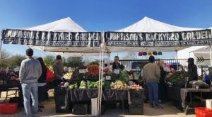 There's So Much To Love About This Lakeside Farmers Market In Austin