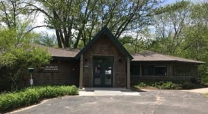 A Trip To This Michigan Nature Center Will Connect You With The Great Outdoors