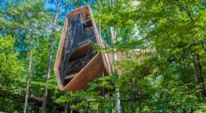 Everyone Needs To Visit This Massive Treehouse In Arkansas That's Unlike Anything Else