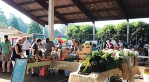 This Georgia Farmer's Market Was Just Named The South's Best & You Need To Visit
