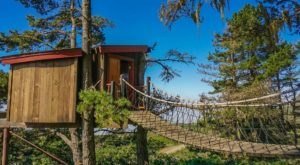 This Treehouse Resort In Northern California May Just Be Your New Favorite Destination
