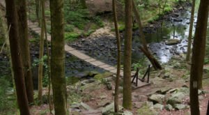 The Magnificent Bridge Trail In Tennessee That Will Lead You To A Hidden Waterfall