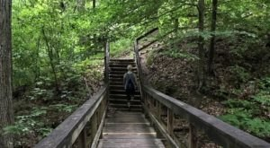 The Easy Trail In Mississippi That Will Take You To The Top Of The World