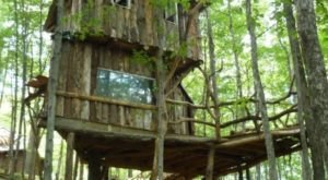 Spend A Night In This Whimsical Treehouse Above The Forest Floor In Vermont