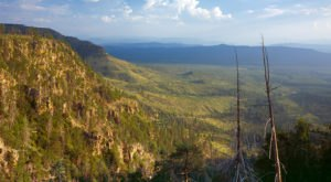 The Greenest Spot In Arizona Will Transport You To A Lush New World