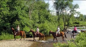 5 Unforgettable Horseback Riding Adventures You Can Only Have In New Hampshire
