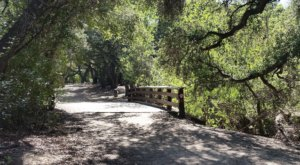 The Hidden Oasis In Southern California Where You'll Discover The Most Breathtaking Trails