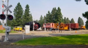 Most People Don't Know There Are Dozens Of Trains Hiding In This Oregon Forest