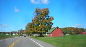 Take These 7 Country Roads Near Buffalo For A Gorgeous Scenic Drive