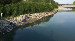 The Underrated Alaska Creek That's Perfect For A Summer's Day