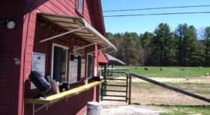 This Charming New Hampshire Farm Has Ice Cream And A Petting Zoo