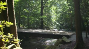 The Coveted State Park Every South Carolinian Needs To Visit At Least Once