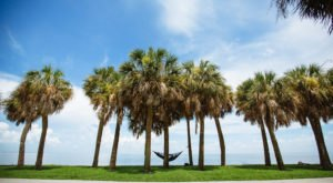 You'll Be Pleased To Hear That Florida's Upcoming Winter Is Supposed To Be Warmer And Drier Than Ever