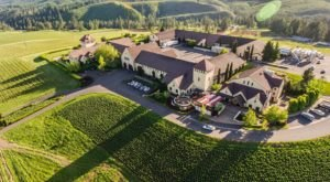 One Of The Largest Organic Vineyards In The Whole Wide World Is Right Here In Oregon
