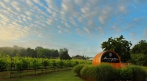 You'll Love Lounging Under The Oak Trees At This 75-Acre Winery In Tennessee