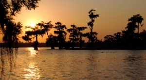 7 Amazing Natural Attractions In Louisiana To Put On Your Bucket List This Year