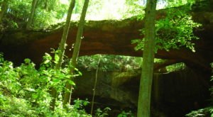 These 8 Easy To Reach Natural Wonders In Alabama Are A Must-See