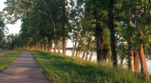 The Ultimate Bucket List For Anyone Who Loves Waterfront Trails In Louisiana