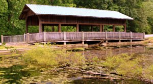 The Enchanting Covered Bridge Hike In Tennessee That's Perfect For An Autumn Day